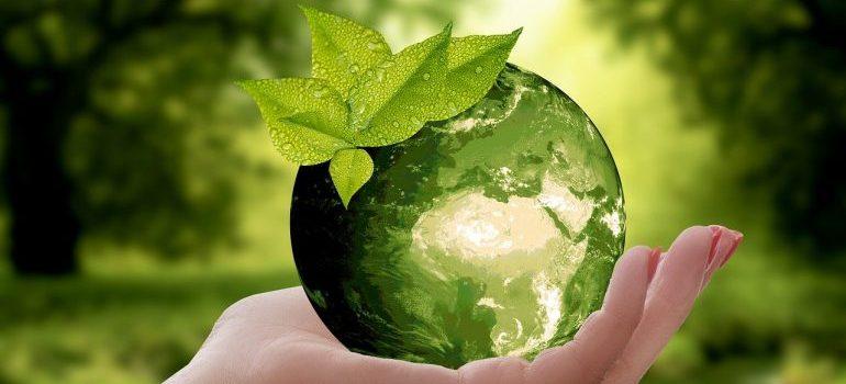 Mother nature represented through a ball.