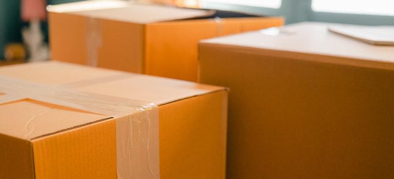 Carton boxes.