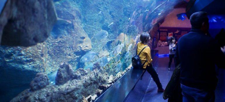 A woman sitting by a tank in an Aquarium.