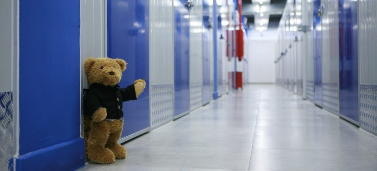 Storage units and a teddy bear in a halway.